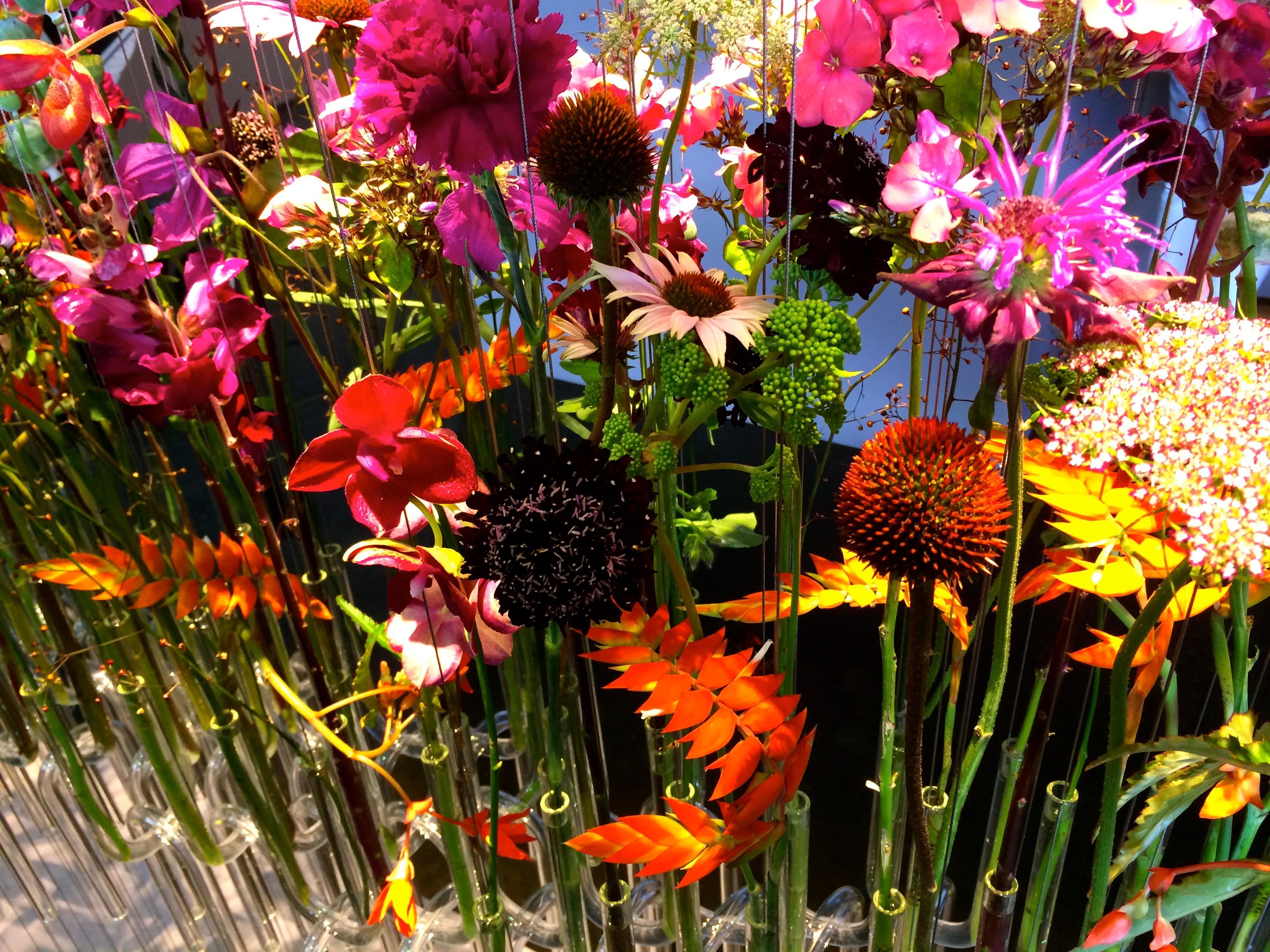 Blumen farbintensiv 02